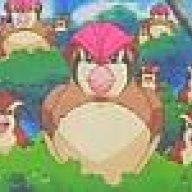 Pidgeotto Trainer